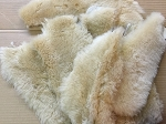 4 Large Tan Sheepskin Wool Hide Belly areas. Repair UGGS, Replace INSOLES, Make Buff Paint Polish Pads